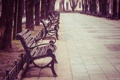 Leere Bänke in einem Park Stockfotos