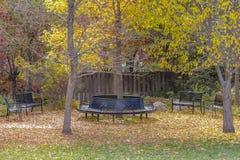 Leere Bänke an einem Park unter üppigen Bäumen mit hellem Laub im Herbst stockbilder