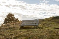 Leere Bank auf Skerwink-Küstenlinien-Spur, Dreiheit, Neufundland, stockfoto