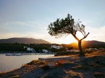Leere Bank, die eine Bucht in Cadaques, Spanien übersieht stockfotos