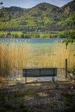 Leere Bank an einem See an einem sonnigen Tag im Sommer lizenzfreies stockbild