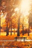 Leere Bank im Park, in den goldenen und gelben Farben des Herbstes; aut stockfotos