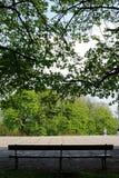 Leere Bank mitten in einem Park unter einem grünen Baum Stockfotos