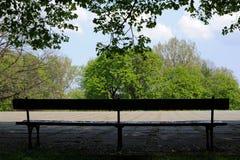 Leere Bank mitten in einem Park unter einem grünen Baum Lizenzfreie Stockbilder