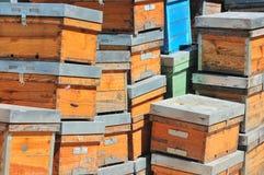 Leere Bienenstöcke Stockfotografie