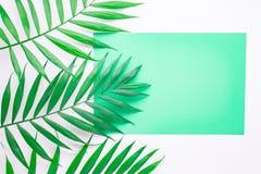 Leere blaue Karte auf tropischen Palmbl?ttern, Sommerferienkonzept, Schablonenplan f?r das Addieren Ihres Entwurfs oder Textes aq lizenzfreie stockfotografie