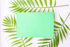Leere blaue Karte auf tropischen Palmbl?ttern, Sommerferienkonzept, Schablonenplan f?r das Addieren Ihres Entwurfs oder Textes aq stockfotografie