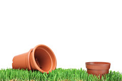 Leere Blumenpotentiometer auf einem grünen Gras Stockbild
