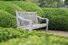 Leere Brown-Holzbank, die mitten in Garten-Hecken sitzt Lizenzfreie Stockfotos