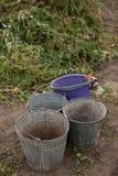 Leere Eimer auf Bodenhintergrund am Biohof Vorbereiten für Stockbild