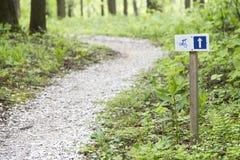 Leere Fahrradspur im Wald Stockbilder