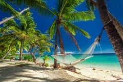 Leere Hängematte im Schatten von Palmen auf tropischem Fidschi Stockfotografie