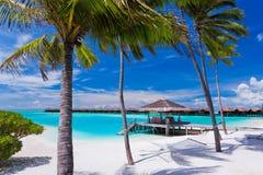 Leere Hängematte zwischen Palmen auf dem Strand Stockfotos