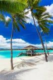 Leere Hängematte zwischen Palmen auf tropischem Strand mit blauem Himmel Lizenzfreies Stockfoto