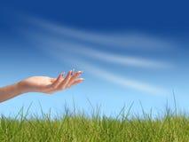 Leere Hand (nach innen gesetzt Ihrer Nachricht) Lizenzfreies Stockfoto