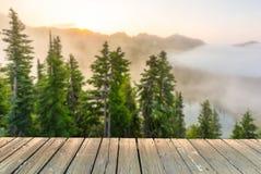 Leere hölzerne Plattformtischplatte bereit zur Produktanzeigenmontage mit Waldhintergrund Lizenzfreies Stockbild