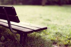 Leere Holzbank im Park nach Regen Stockfotos