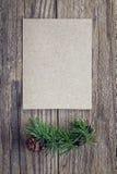 Leere Karte und Lärche verzweigen sich mit Kegel auf einem Hintergrund der alten Boa Stockfotografie
