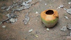 Leere Kokosnuss auf dem Sandboden lizenzfreie stockfotografie