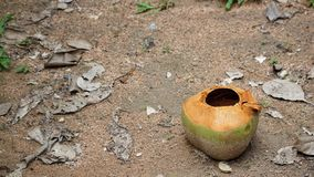 Leere Kokosnuss auf dem Sandboden stockfotografie
