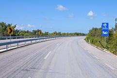 Leere Landstraße zum tropischen Strand Stockbilder