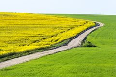 Leere landwirtschaftliche Straße Stockbild
