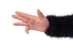 Leere offene Hand, wie geschnitten Stockfoto