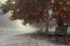 Leere Parkbänke auf dem Morgen eines nebeligen Herbstes Lizenzfreie Stockfotos