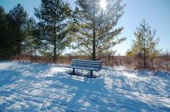 Leere Parkbank im Winter auf einem Schnee bedeckte Spur mit grünen Bäumen blauer Himmel und Sonne Stockbild