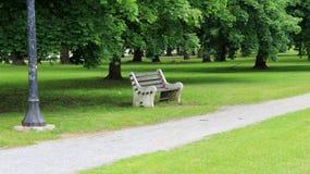 Leere Parkbank unter schattigen Bäumen Lizenzfreies Stockbild
