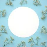 Leere Rahmenkartenanmerkung und Blumenebenenlage Stockbilder