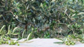 Leere Steintabelle mit unscharfem Olivenbaumhintergrund mit einem Thema im Freien stockfoto