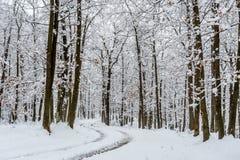Leere Straße bedeckt im Schnee Stockfotografie