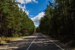 Leere Straße des Sommers, die den Pinery im Nationalpark Burabai-Natur, Kasachstan durchläuft Stockfotografie