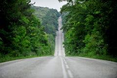 Leere Straße durch den Wald Stockbilder