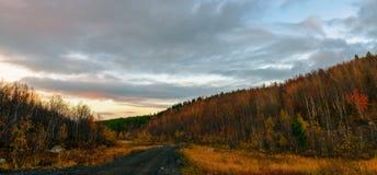 Leere Straße durch Herbstgold färbte Wald-taiga Hügel Stockfoto