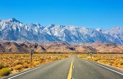 Leere Straße nahe einziger Kiefer mit Felsen der Alabama-Hügel und Sierra Nevada im Hintergrund, Inyo County, Kalifornien, verein lizenzfreie stockfotos