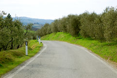 Leere Straße in Toskana Stockbilder