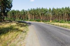 Leere Straße, Wald und Himmel Stockfoto