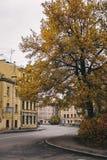 Leere Straßen der Stadt im Herbst Stockbilder