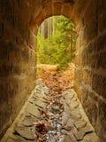 Leere Straßenrinne im Tunnel, Wald draußen. Steinige Wände Stockfoto