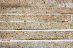 Leere Treppe mit einigen trockenen Blättern auf es Lizenzfreies Stockfoto
