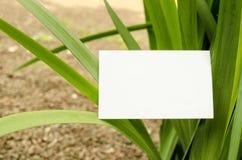 Leere Visitenkarte im Freien Lizenzfreie Stockfotografie