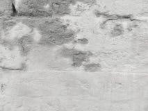 Leere Wand des Gipses Graue Farbe stockfoto