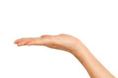 Leere weibliche Frauenhandholding lokalisiert auf Weiß Lizenzfreie Stockfotografie