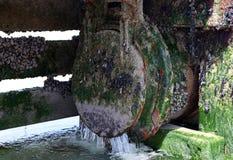 Leeren Sie Abwasserverunreinigung Stockbilder