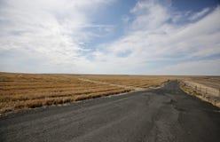 Leeren Sie alte Straße mit dem Horizont, der flaches Ackerland durchläuft Lizenzfreie Stockfotografie