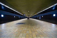 Leeren Sie die U-Bahnstation, furchtsam Lizenzfreies Stockfoto