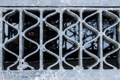 Leeren Sie Gitter Stockbilder
