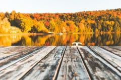 Leeren Sie hölzernes Dock auf dem See mit Bäumen auf Hintergrund Stockfotografie